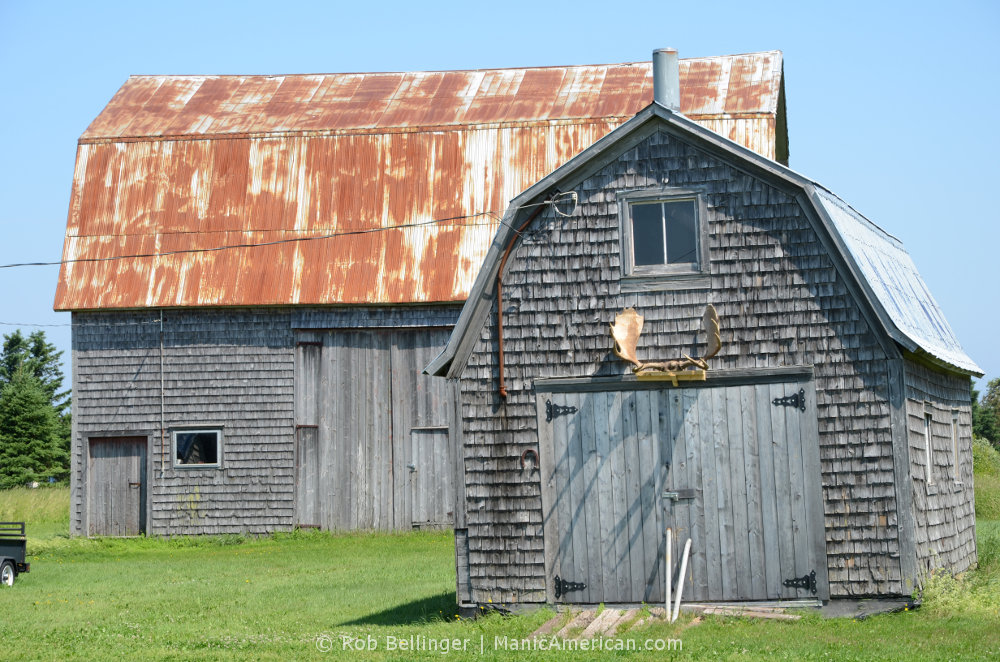 Two weathered barns, one with a pair of moose antlers hanging above its doors.