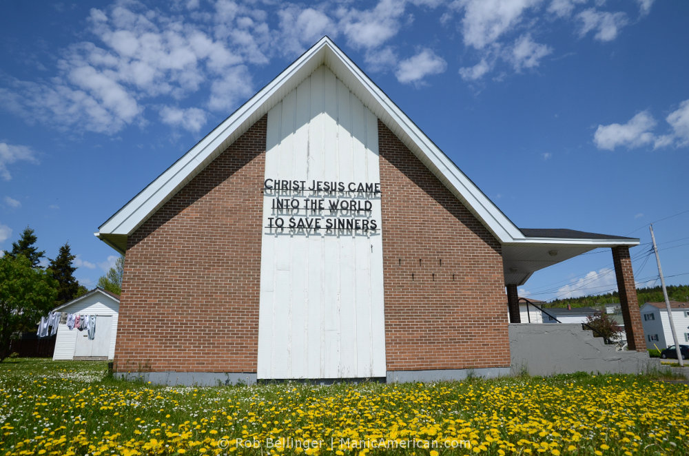 A brick church in a field of daffodils. Corner Brook, Newfoundland.
