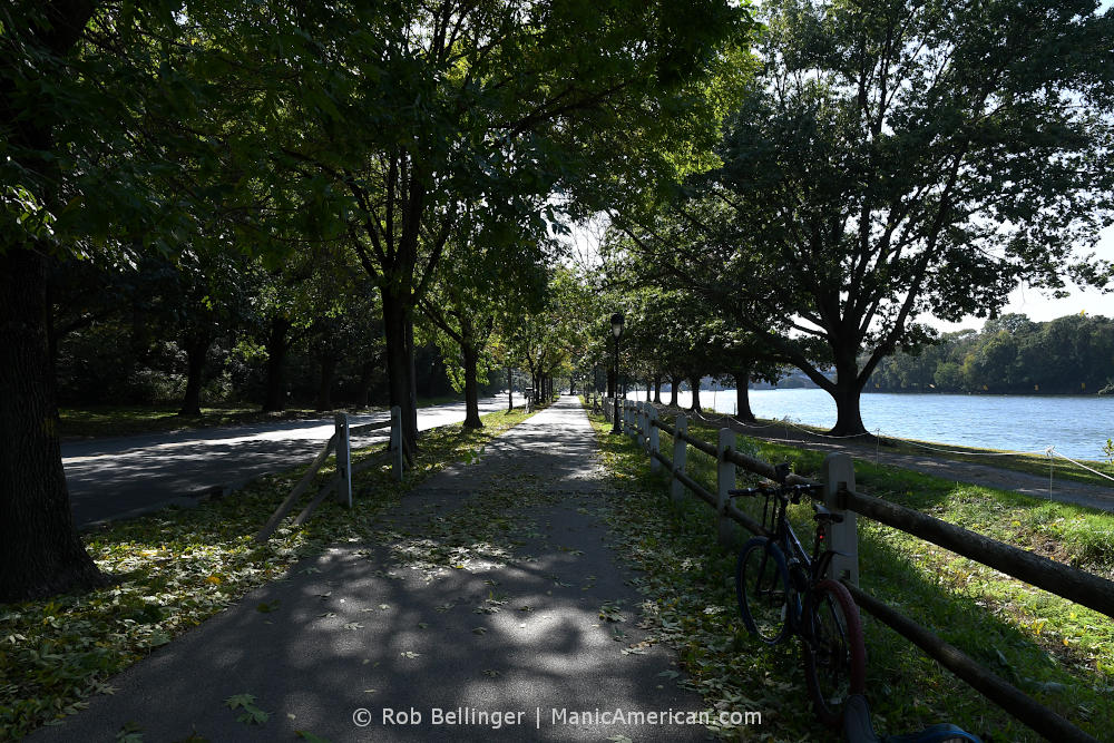 A paved trail between trees along a river