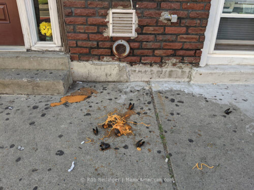 an order of pasta and mussels splattered on the sidewalk of an apartment building, with fake plastic flowers in a window